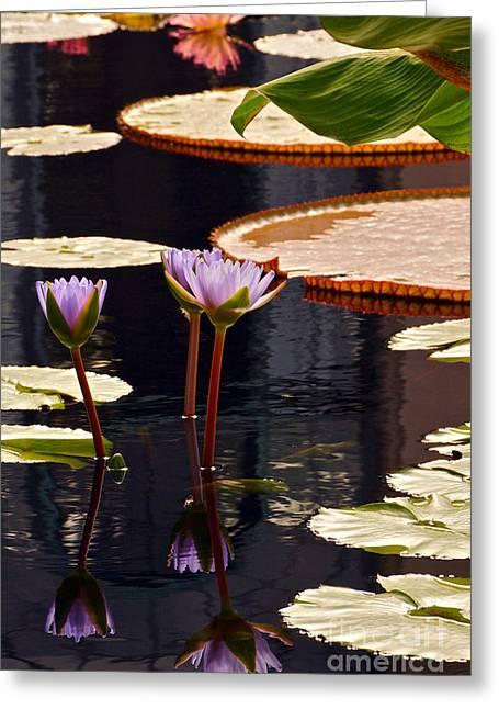 Tropical Waters Floral Charm Greeting Card by Byron Varvarigos