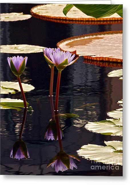 Tropical Waters Floral Charm -- Version 2 Greeting Card by Byron Varvarigos