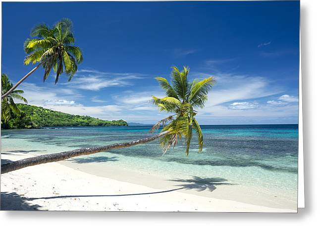 Tropical White Sand Beach Greeting Card