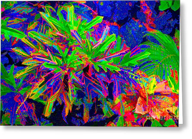 Greeting Card featuring the photograph Tropicals Gone Wild by David Lawson
