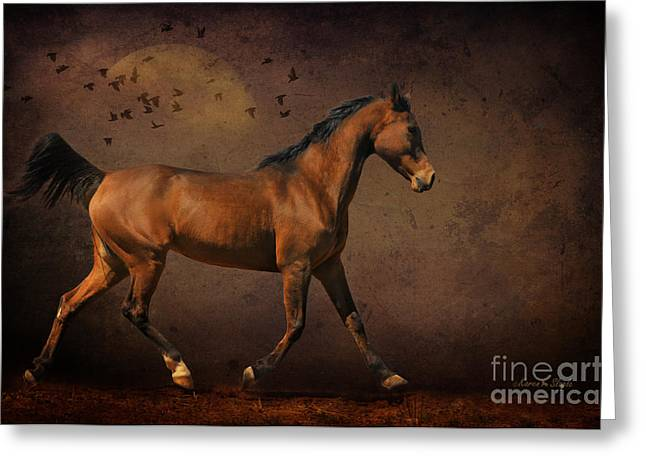 Trotting Into The Night Greeting Card by Karen Slagle