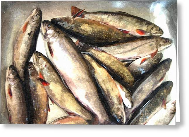 Trout Digital Painting Greeting Card by Barbara Griffin