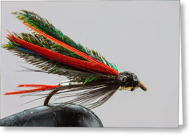 Trout Fly  Greeting Card by Craig Lapsley