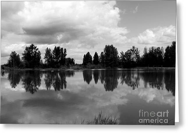 Trout Pond Reflection Greeting Card