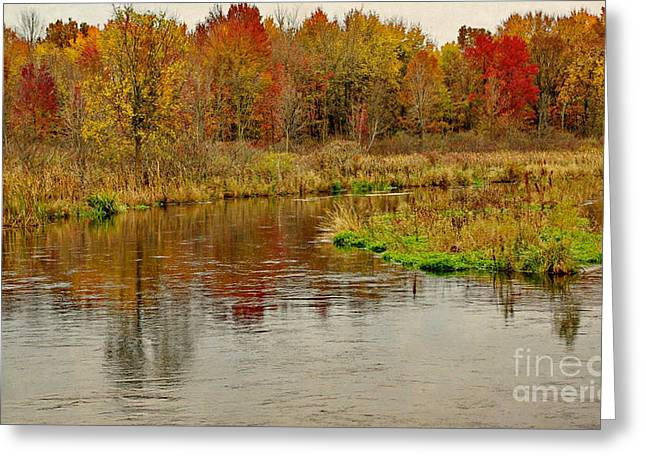 Trout Stream II- Textured Greeting Card by Gary Richards