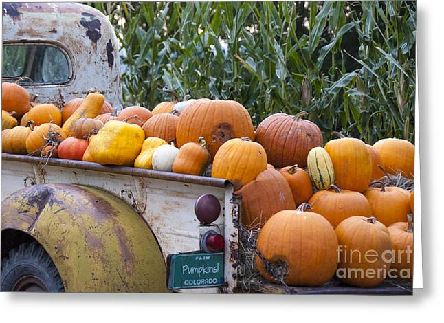 Truckful Of Pumpkins Greeting Card