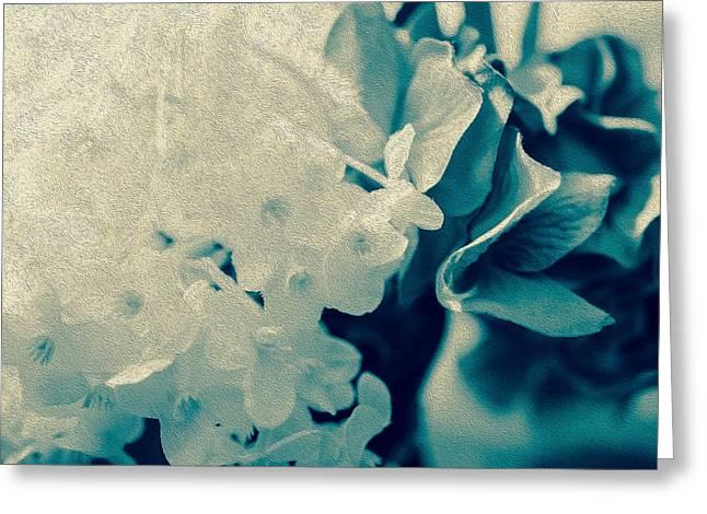 True Blue  Greeting Card by Maibel  Ziello