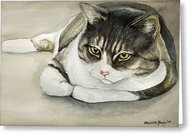 Tubby Greeting Card by Charlotte Yealey