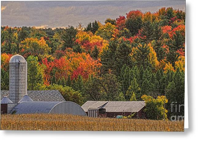 Tucked Away In Autumn Greeting Card by Trey Foerster
