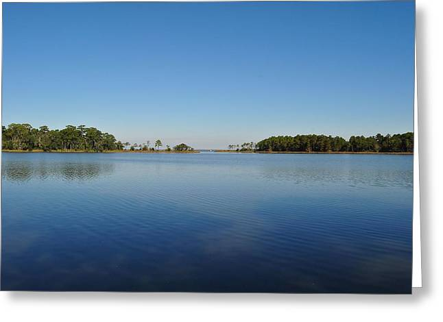 Tucker Bayou Greeting Card