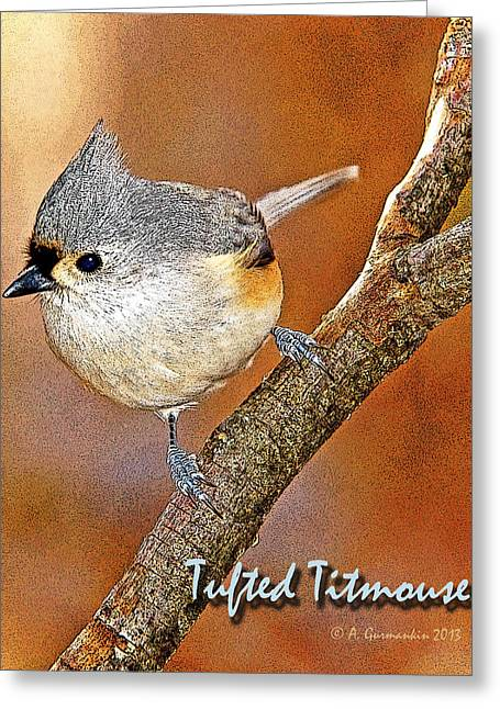 Greeting Card featuring the photograph Tufted Titmouse by A Gurmankin