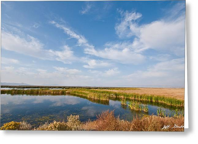 Greeting Card featuring the photograph Tule Lake Marshland by Jeff Goulden