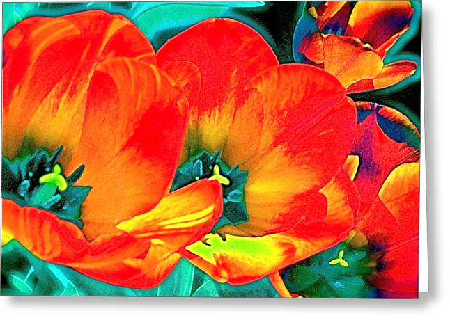 Tulip 1 Greeting Card by Pamela Cooper