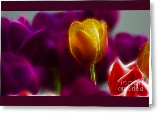 Tulip-6983 Greeting Card by Gary Gingrich Galleries