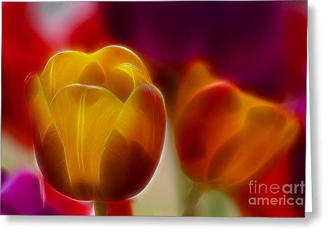 Tulip-7016-fractal Greeting Card by Gary Gingrich Galleries