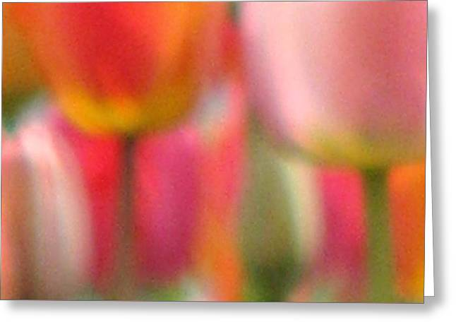 Tulip Abstract Greeting Card by Angela Davies