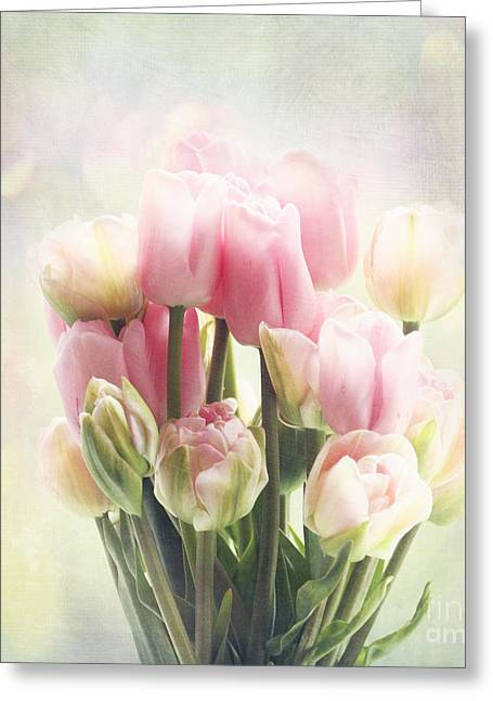 Tulip Bouquet Greeting Card by Sylvia Cook