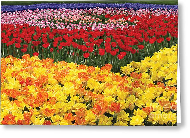 Greeting Card featuring the digital art Tulip Field by Tim Gilliland