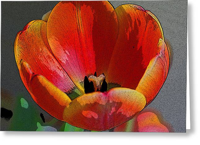 Tulip2 Greeting Card by Valerie Timmons