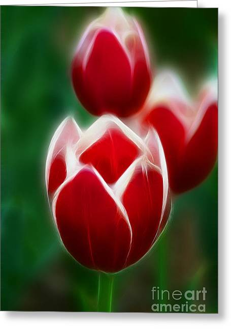 Tulips-6835-fractal Greeting Card by Gary Gingrich Galleries