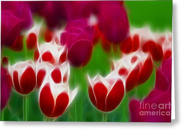 Tulips-6848-fractal Greeting Card by Gary Gingrich Galleries