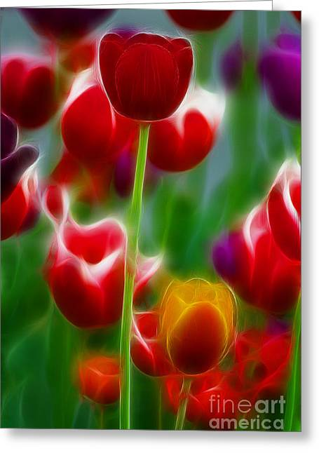 Tulips-7069-fractal Greeting Card by Gary Gingrich Galleries