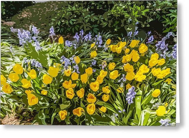 Tulips And Bluebells Greeting Card by Gary Cowling