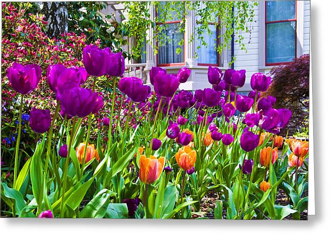 Tulips And Bush House Greeting Card