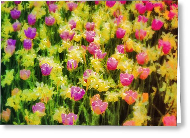 Tulips And Daffodils Greeting Card by Jill Balsam