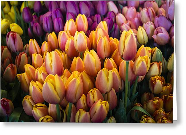 Tulips At The Market Greeting Card
