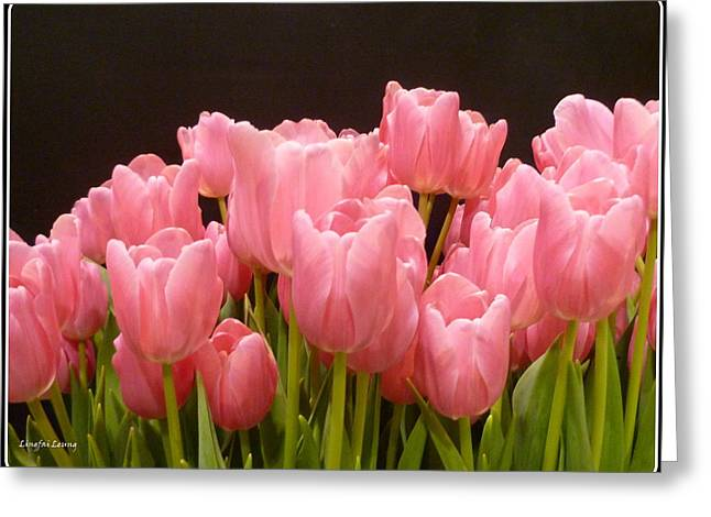 Greeting Card featuring the photograph Tulips In Bloom by Lingfai Leung
