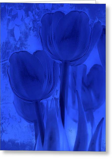 Tulips In Cobalt Blue Greeting Card