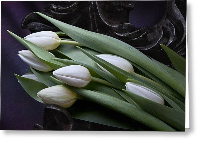 Tulips Laying In Wait Greeting Card by Tom Mc Nemar