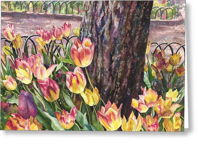 Tulips On The Mall Greeting Card