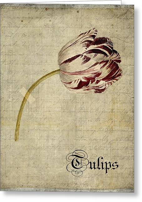 Tulips - S01bt2t Greeting Card by Variance Collections