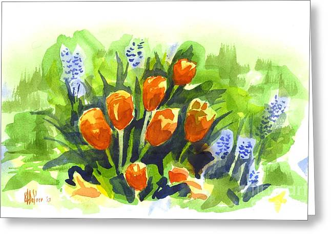 Tulips With Blue Grape Hyacinths Explosion Greeting Card by Kip DeVore