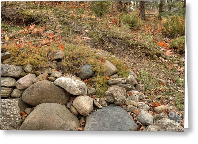 Boonies Greeting Cards - Tumbled Rocks and Autumn Leaves Greeting Card by Deborah Smolinske