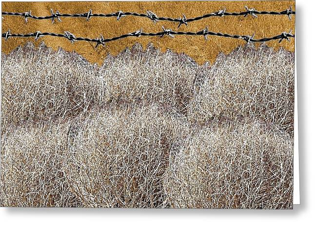 Tumbleweed And Barbed Wire Greeting Card by Suzanne Powers