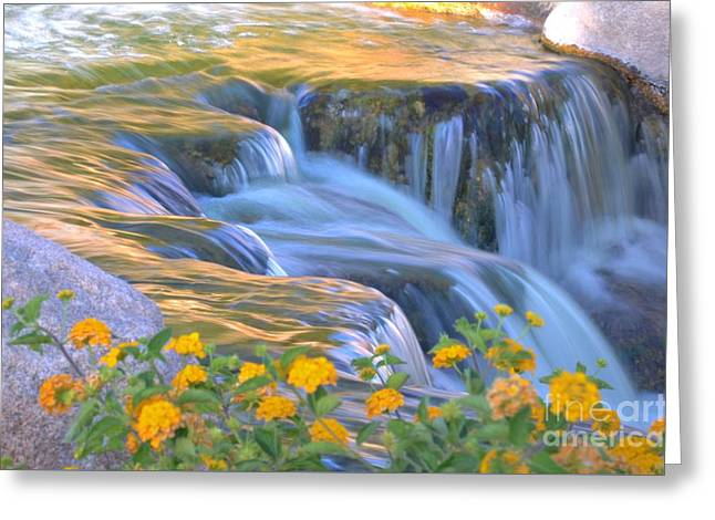 Tumbling Waters Greeting Card