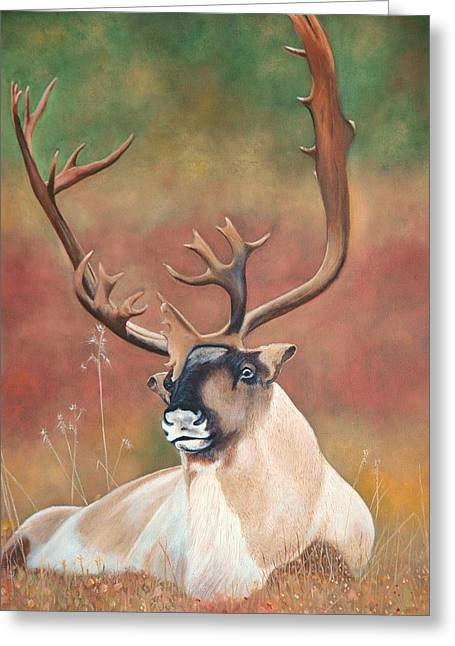 Tundra Caribou Greeting Card