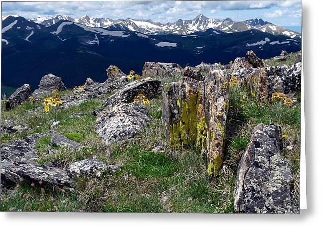 Tundra Views Greeting Card