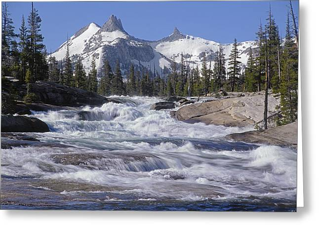6m6539-tuolumne River  Greeting Card