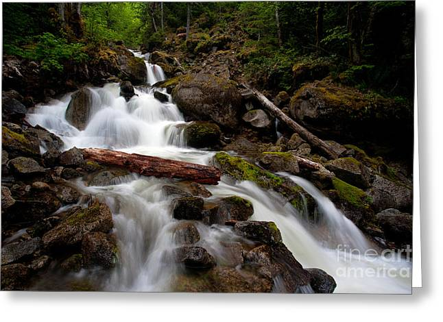 Turbulent Flow Greeting Card by Mike Reid