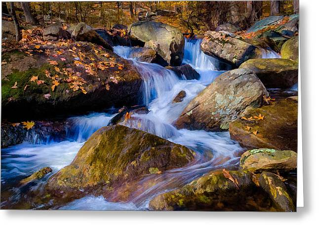 Turkey Hill Pond Stream Greeting Card
