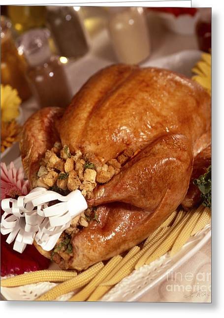 Turkey With Stuffing And Corn Greeting Card