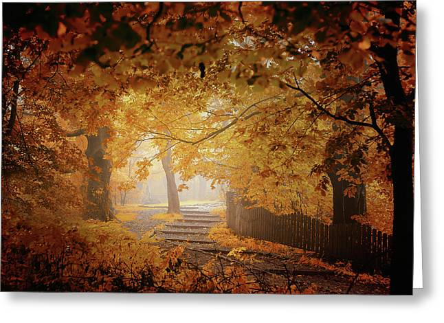 Turn To Fall Greeting Card