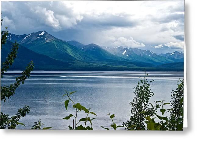 Turnagain Arm And Kenai Mountains-ak Greeting Card