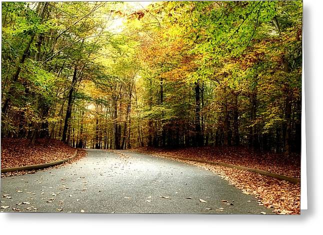 Turning Up - Holmdel Park Greeting Card by Angie Tirado