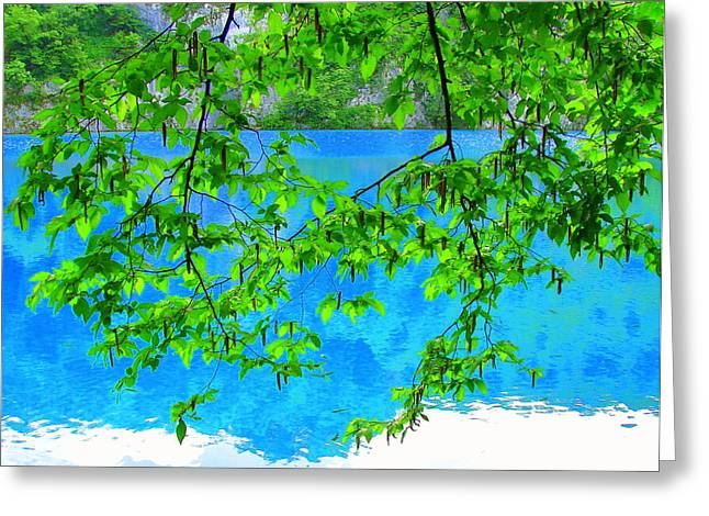 Greeting Card featuring the photograph Turquoise Lake by Ramona Johnston