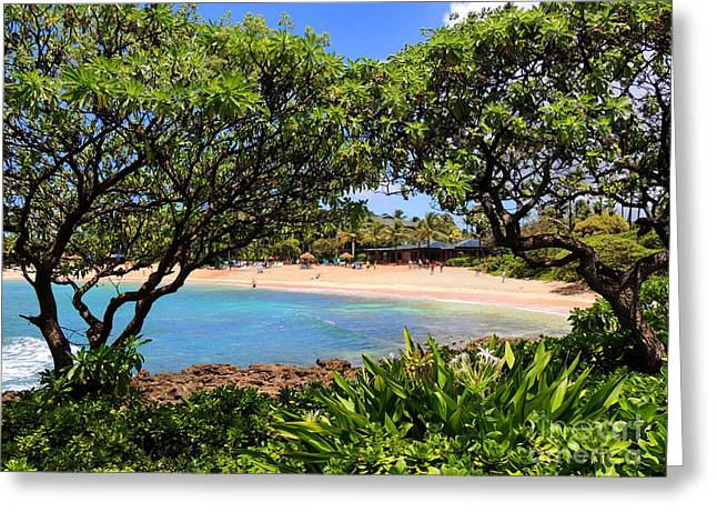 Greeting Card featuring the photograph Turtle Bay Beach by Kristine Merc